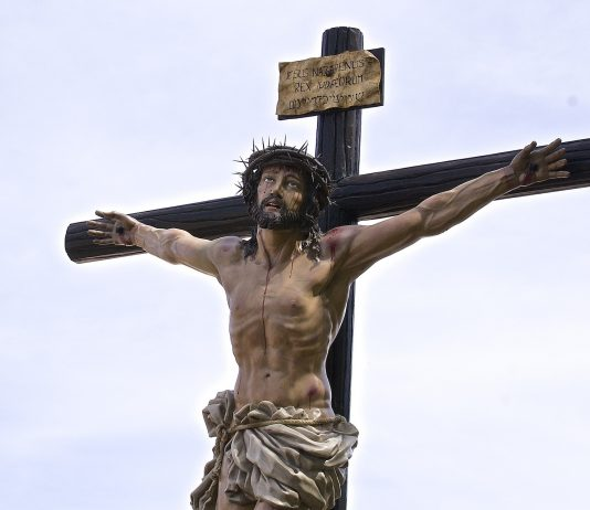 Catholic News Records Online
