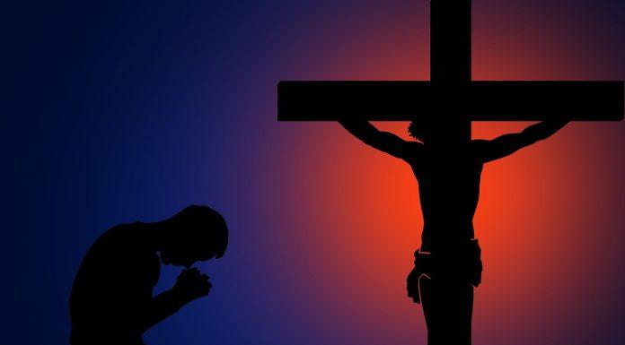 Online Catholic News Services